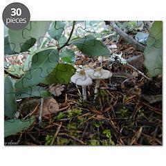 White Mushroom/fungi Puzzle