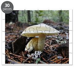 mushroom/fungi Puzzle