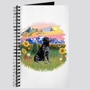 Mt Country-Black Lab# Journal