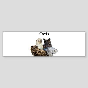 Owls Sticker (Bumper)
