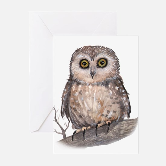 Wide Eyed Owl Greeting Cards (Pk of 10)