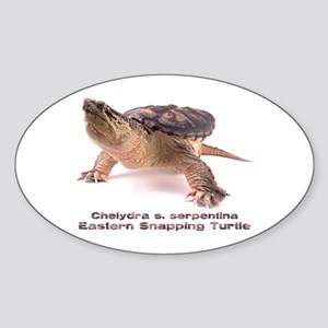 Snapper Oval Sticker
