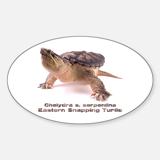 Snapper Oval Decal