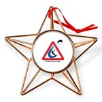 Enthusiasts only Copper Star Ornament