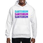 Rick Santorum Purple & Teal Hooded Sweatshirt