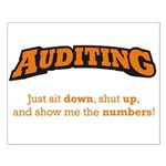 Auditing-Numbers Small Poster