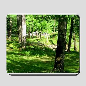 Sparkman Park Hole 11 Mousepad