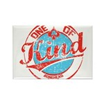 One of A kind 2 Rectangle Magnet