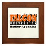 Falcon University Framed Tile