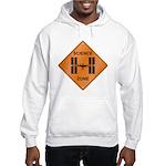 ISS / Science Zone Hooded Sweatshirt