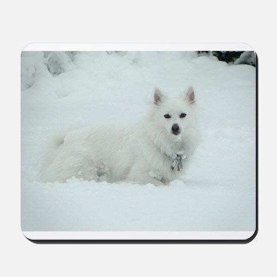 American Eskimo Dog Snow Day Mousepad