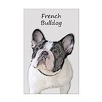 French Bulldog (Brindle Pied) Mini Poster Print