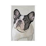 French Bulldog (Brindl Rectangle Magnet (100 pack)