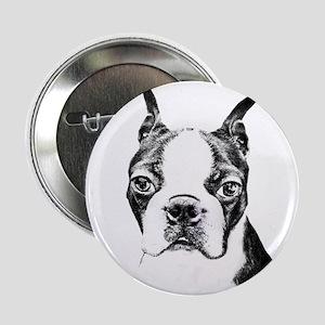 "BOSTON TERRIER - DOG 2.25"" Button"