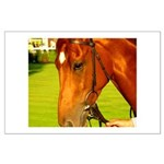 horse Large Poster