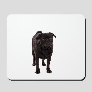 Pug 5 Mousepad
