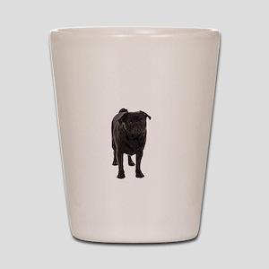 Pug 5 Shot Glass