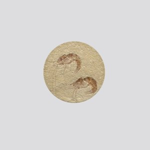 Pair of Fossilized Shrimp Mini Button