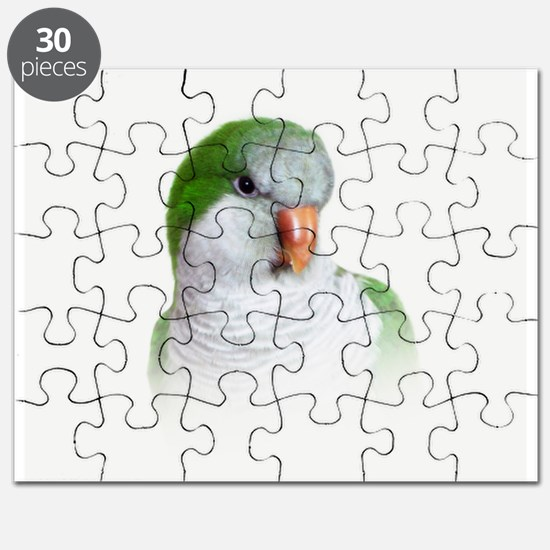 Green Quaker Parrot Puzzle