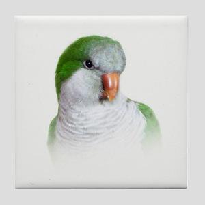Green Quaker Parrot Tile Coaster