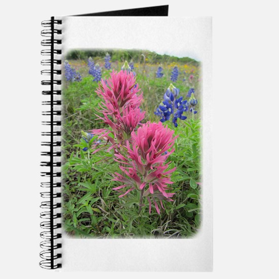 Texas Wildflowers Journal