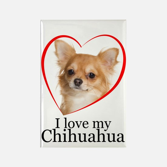 Love My Chihuahua Rectangle Magnet