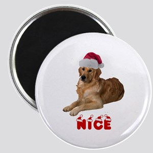 Nice Golden Retriever Magnet