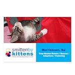 Smitten By Kittens Postcards (Package of 8)