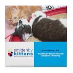 Smitten By Kittens Tile Coaster