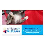 Smitten By Kittens Rectangle Sticker