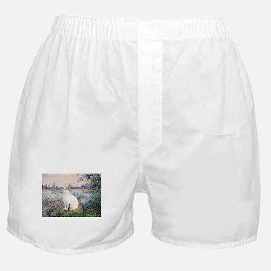 Seine / Boxer Shorts