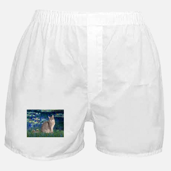 Lilies #5/Blue Abyssinian cat Boxer Shorts