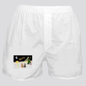Night Flight-2 Tabbys Boxer Shorts