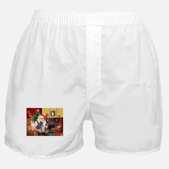 Santa's Five Cats Boxer Shorts