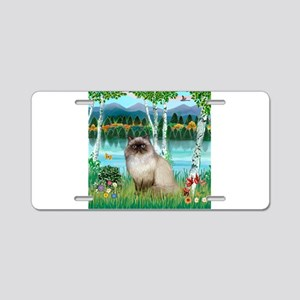 Birches / Himalayan Cat Aluminum License Plate