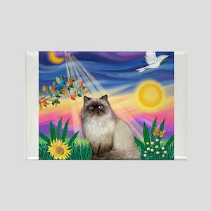 Twilight / Himalayan Cat Rectangle Magnet