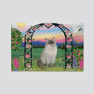 Blossoms / Ragdoll Rectangle Magnet