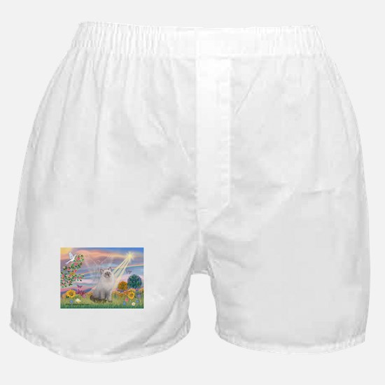 Cloud Angel & Ragdoll Boxer Shorts