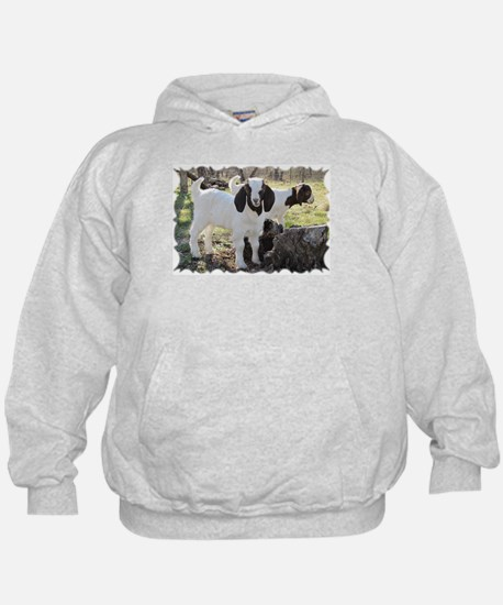 Texas country photos. Texas W Hoody