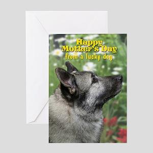 Norwegian Elkhound Mother's Day Card
