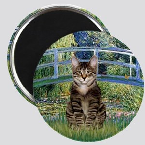 Bridge / Brown tabby cat Magnet