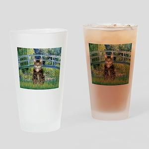 Bridge / Brown tabby cat Drinking Glass