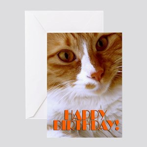 General Happy Birthday Sweet Cat Greeting Card