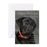 Black labrador Greeting Cards