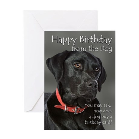 From The Black Lab Birthday Card By Shopdoggifts