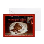 Brittany Spaniel Christmas Cards (Pk of