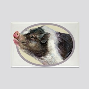 Potbellied Pigs Rectangle Magnet
