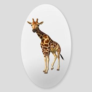 The Giraffe Sticker (Oval)