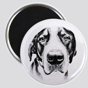 SWISS MOUNTAIN DOG - Magnet