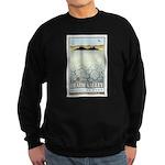 National Parks - Death Valley 3 Sweatshirt (dark)
